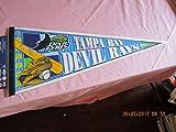 Tampa Bay Devil Rays baseball pennant