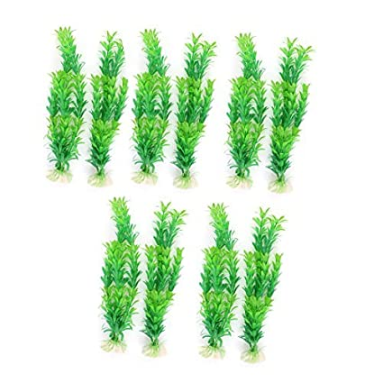 Amazon.com : eDealMax Ornamento planta plástico emulational pecera acuario de 10pcs 30cm Verde : Pet Supplies