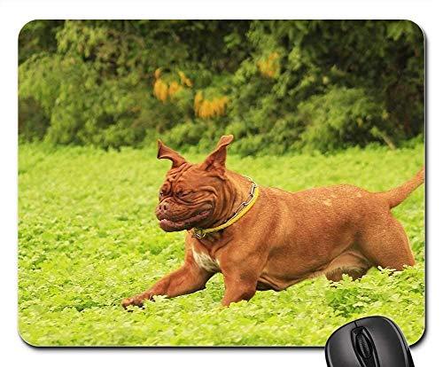 Gaming Mouse Pads,Mouse mat,Dog Mastiffs Bordeaux De Dogue Outdoors Summer 2]()