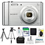 Sony Cyber-shot DSC-W800 Digital Camera (Silver) + 64GB Pixi-Advanced I3ePro Accessory Bundle – International Version
