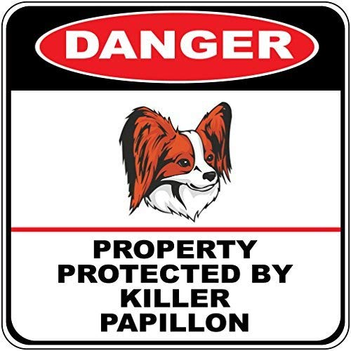 Liz66Ward Danger Property Protected by Killer Papillon Dog Aluminum Corssing Sign Caution Signs Funny Metal Animal Crossing Wall Art Decor 12x12 Novelty Gifts Sign ()