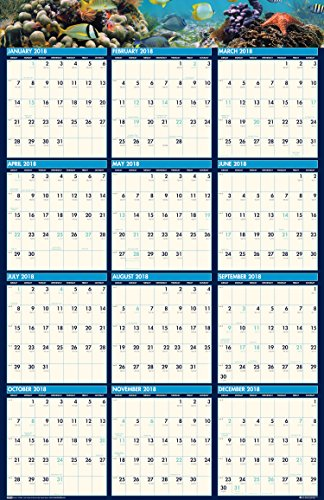 (House of Doolittle 2018 Laminated Wall Calendar, Earthscapes Sea Life, Reversible, 24 x 37 Inches, January - December (HOD3969-18))