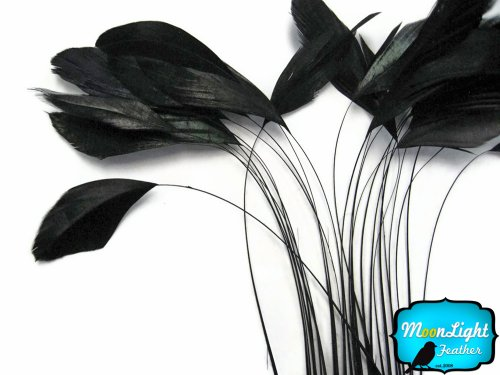 Moonlight Feather | 1 Dozen - Black Stripped Rooster Coque Tail Feathers Craft Costume Supply -