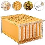 Happybuy 7Pcs Auto Flow Comb Beehive Frames Kit Raw Auto Flow Honey...