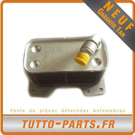Radiador de aceite BMW 535i 2008 a 2010 - 3.0L: Amazon.es ...