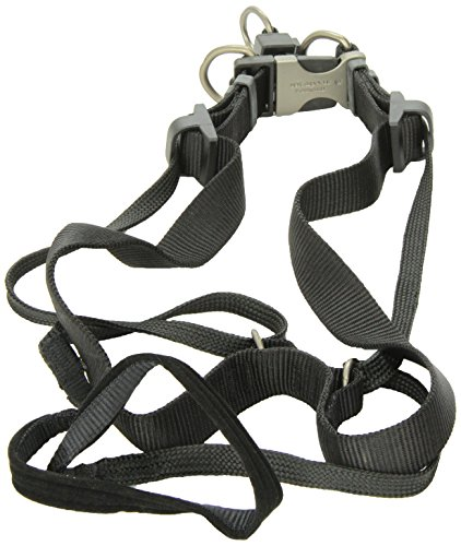 (Sporn Pet DSP35571 Dog Head Halter, X-Large, Black)