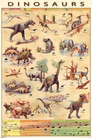 Dinosaurs Species Jurassic Age Timeline Poster 61x91.5cm: Amazon ...