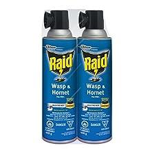 Raid Wasp & Hornet Killer, 2 x 400g, value pack