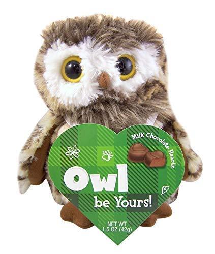 Valentine's Day Plush Stuffed Animal with Milk Chocolate Hearts (Owl)]()