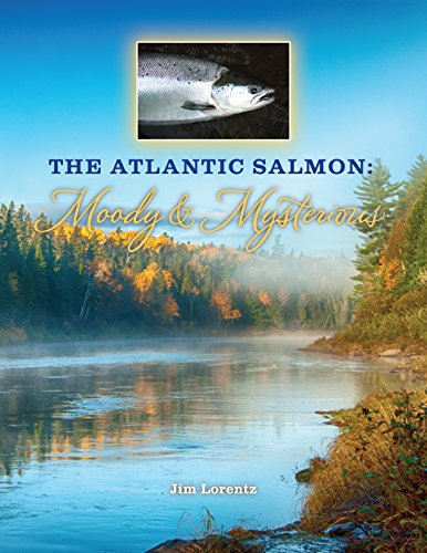 The Atlantic Salmon: Moody & Mysterious (Atlantic Salmon)