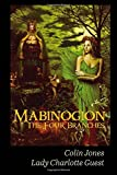 Mabinogion, the Four Branches: The Ancient Celtic Epic