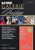 ILFORD 2005003 GALERIE Prestige Gold Fibre Gloss - 17 x 22 Inches, 25 Sheets