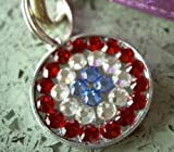 Red Blue & White Patriotic Swarovski Rhinestone Pet ID Tag