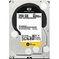 WESTERN DIGITAL WD2503ABYZ RE4 250GB 7200 RPM 64MB cache SATA 6.0Gb/s 3.5 internal hard drive Bare Drive
