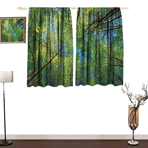 W Machine Sky Forest Home DecorBedroom Blackout curtainsSummer Branches Tranquil Lime Conservation Area Mangrove Willow ParadiseDurable W55 xL63 Green