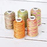 Threadart 100% Cotton Variegated Thread Set | 5