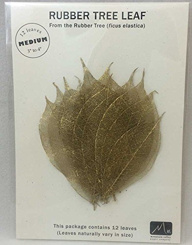 (GOLD MEDIUM RUBBER TREE LEAVES - Pack of 12 skeleton leaves)
