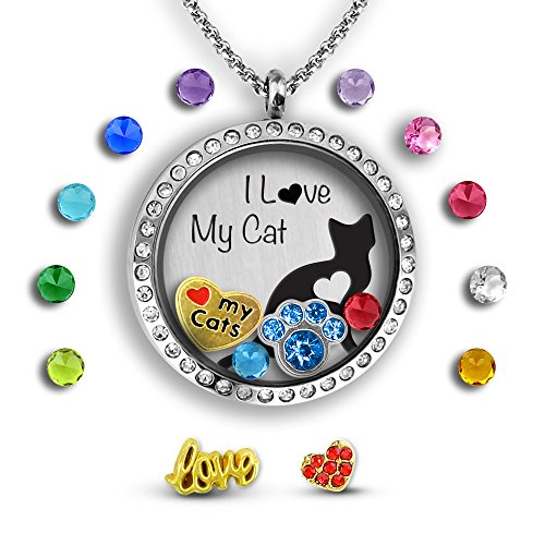 A Touch of Dazzle Cat Lover Gifts Floating Charm Necklace Cat Jewelry | Cat Lover Gifts for Women | I Love Cats in a Cat Necklace for Women | Cat Themed Gifts for Women Dazzle Gift