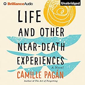 Life and Other Near-Death Experiences Audiobook