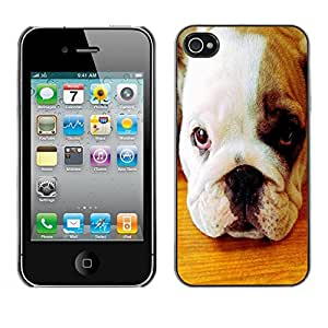 Be Good Phone Accessory // Dura Cáscara cubierta Protectora Caso Carcasa Funda de Protección para Apple Iphone 4 / 4S // American Pit Bull Terrier Bulldog Puppy
