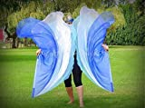 WATER Angel Wing Catch the Fire Worship Flags (triple layer; pair)