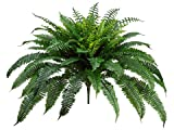 Silk Plants Direct Boston Fern Bush (Pack of 2)