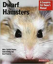 Do hamsters make good pets?