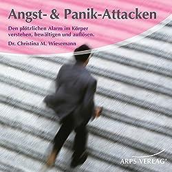Angst- & Panik-Attacken. Den plötzlichen Alarm im Körper verstehen, bewältigen und auflösen