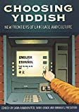 img - for Choosing Yiddish: New Frontiers of Language and Culture (Non-Series) book / textbook / text book