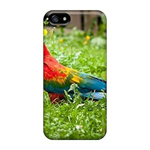 Fashionable Design Bird 1 Rugged Cases Covers For Iphone 5/5s New