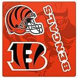 NFL Cincinnati Bengals Magnet Sheet