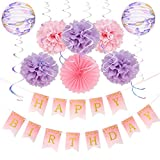 Happy Birthday Decorations Girl Tissue Paper Pom Poms Lantern Decor Pink Purple - 10pcs