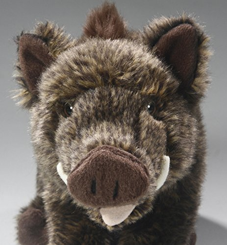 Amazon.com: Boar, Wild Pig sitting, 9.5 inches, 28cm, Plush Toy, Soft Toy, Stuffed Animal: Toys & Games