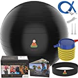 Exercise Ball Balance Anti-Burst Balls   Best Professional Stability Set – Yoga Large Thick Fitness Ball With Pump & Accessories, Extra Pins For Valve, Premium Elastic Loop &Hard Cover Workout Guide …