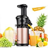 Juicer Amzdeal Slow Juicer – Masticating Juicer Machine Cold Press Juicer BPA Free for High Nutrient Fruits and Vegetables Juice Easy to Clean 200w For Sale
