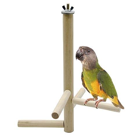 Legendog Juego De Escaleras para Pájaros Creativo Juguete De Jaula ...