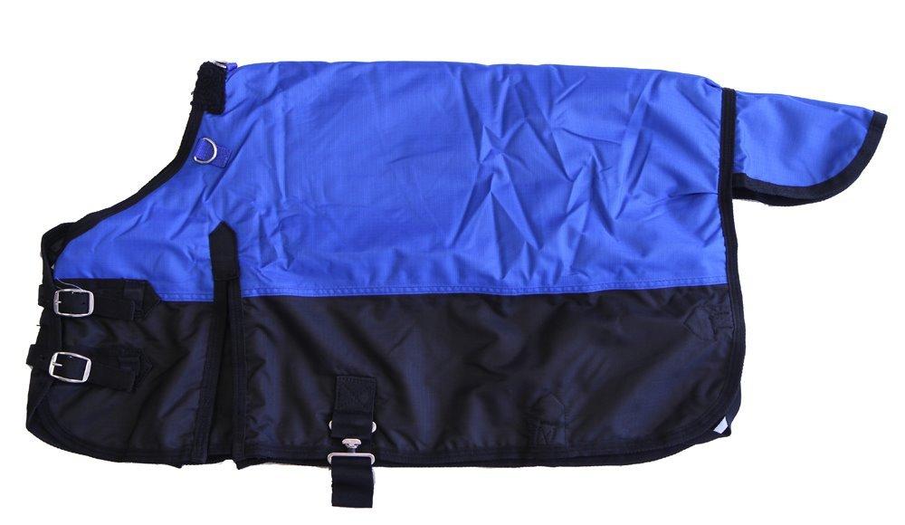 Miniature Horse 600D Light Weight Water Proof Blanket Royal Blue, 38''