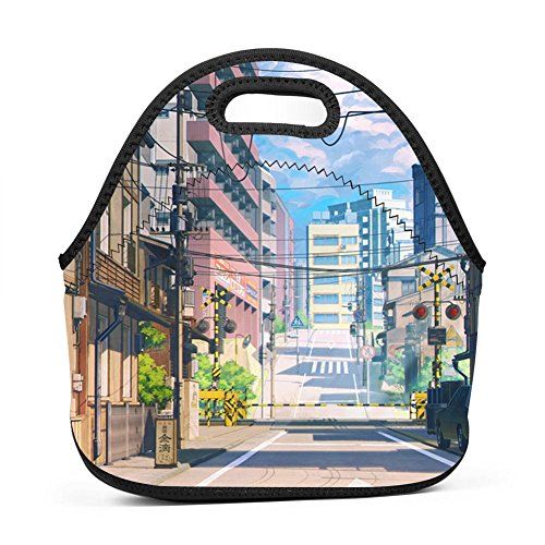 Brniogn Waterproof Lunch Box Carry Case Summer Cit Lunch Bag for Adult Women and Men - Idea for Beach,Picnics,Road Trip,Meal Prep,Everyday Lunch to Work or School -