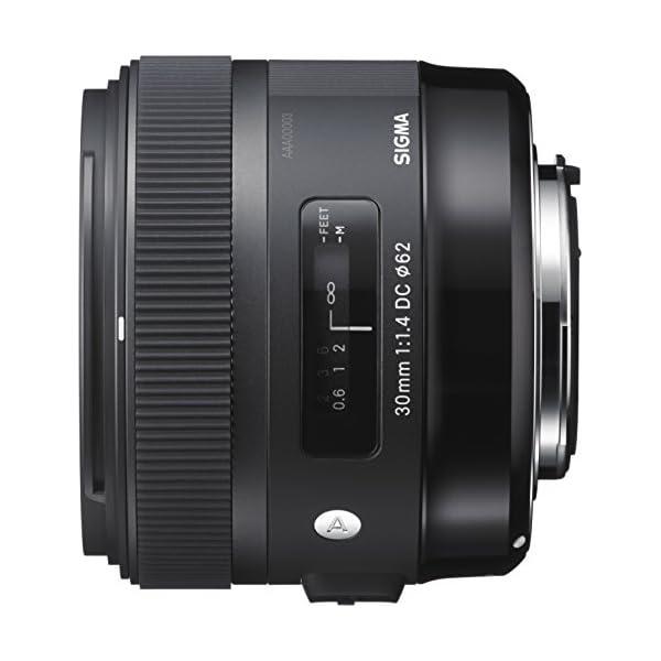 RetinaPix Sigma 30mm f/1.4 DC HSM Lens for Canon Digital SLR Cameras (Black)