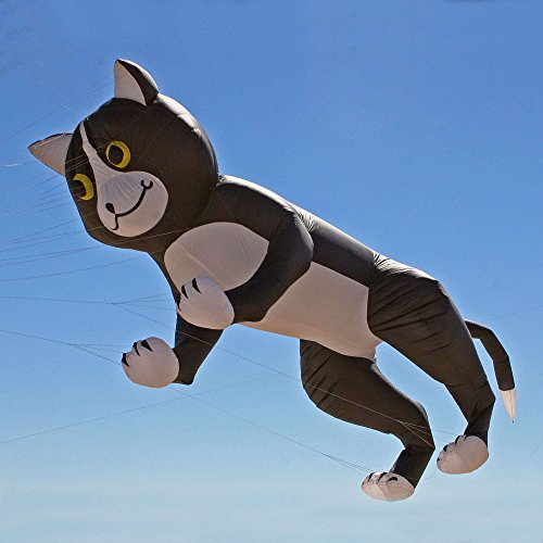 Cat and Mouse Kite Line Laundry by Gomberg Kite Productions