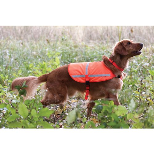 Reflective Vest for Dogs – X Large, My Pet Supplies