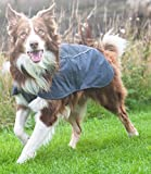 RUFFWEAR ARIA DOG PET RAIN JACKET FULL COVERAGE WATERPROOF BREATHABLE ALL SIZES & COLORS (Medium, Twilight Gray)