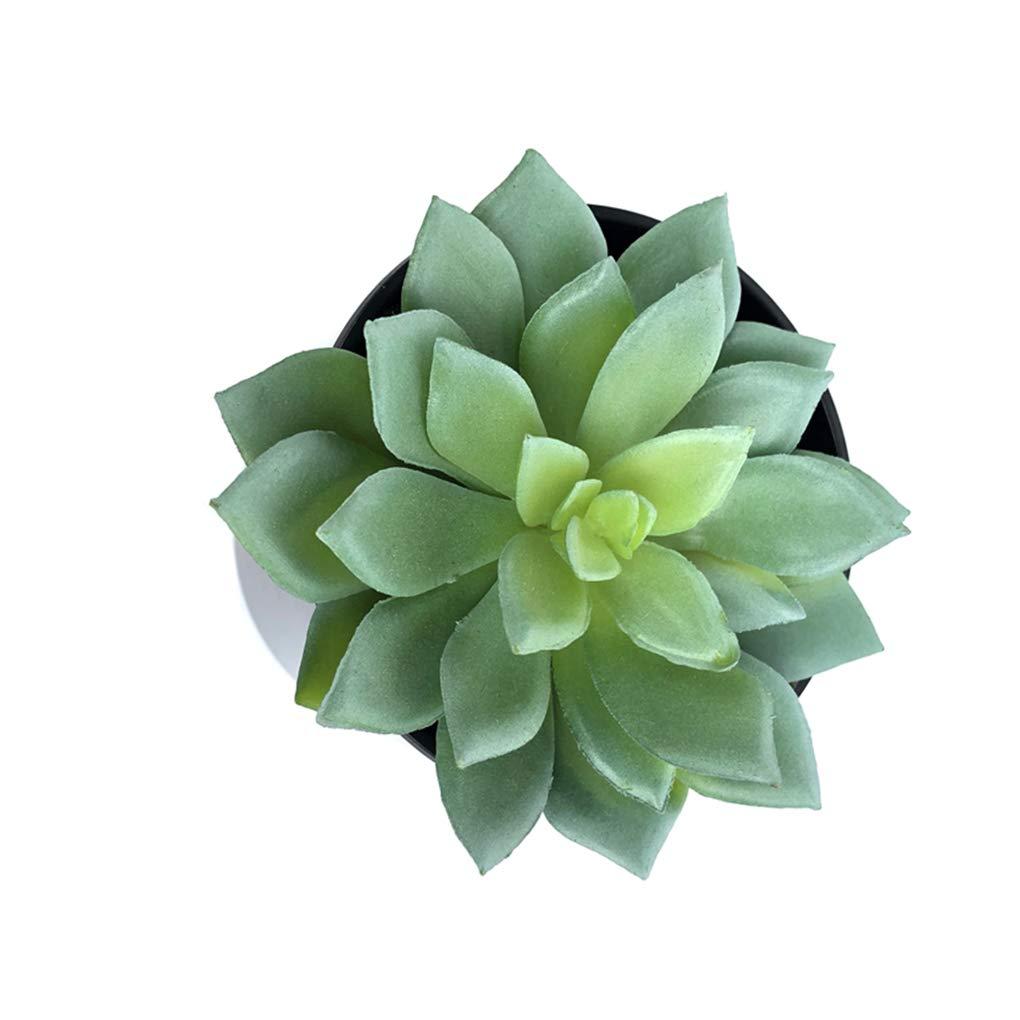 Babysbreath17 Babysbreath17 Babysbreath17 Simulazioni Mini Succulente Fake Plastic Piante Artificiali Giardino domestiche Living Camera Decorazioni Colore Autunnale 18.5 * 11cm 955787