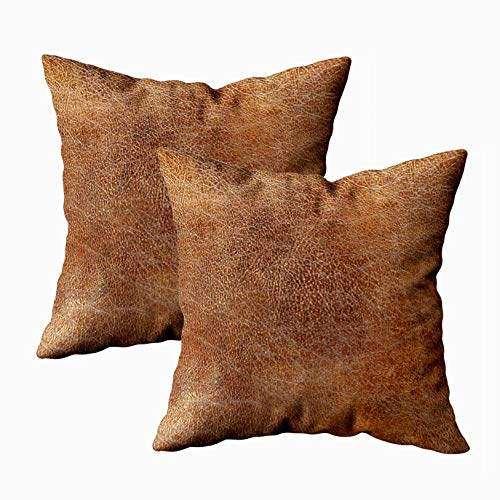 Camel Eel (Capsceoll 2PCS Leather Camel Brown Print 144 Cowhide Decorative Throw Pillow Case 18X18Inch,Home Decoration Pillowcase Zippered Pillow Covers Cushion Cover with Words for Book Lover Worm Sofa Couch)