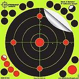 Splatterburst Targets 8-Inch Stick and Splatter