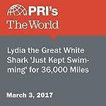 Lydia the Great White Shark 'Just Kept Swimming' for 36,000 Miles | Lidia Jean Kott