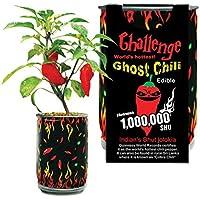 Portal Cool Súper Fantasma pimienta del chile picante