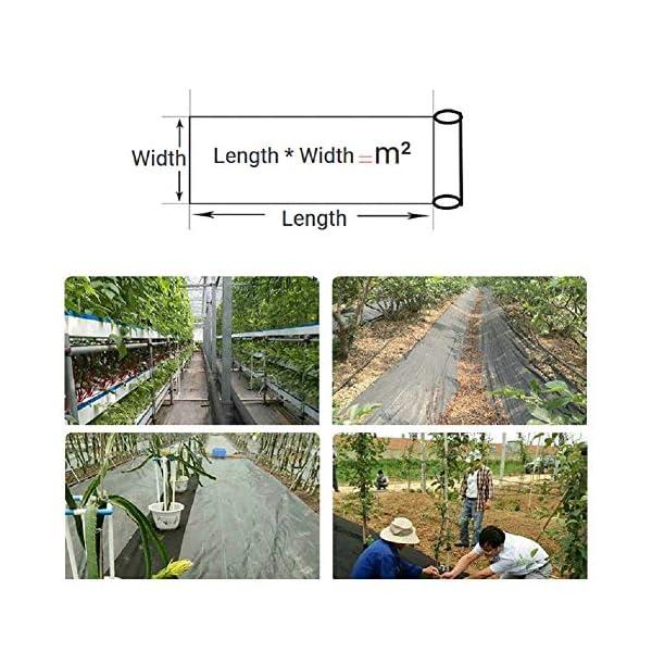 Piantagione di piante per il controllo delle erbacce - Barriera erbaccia per copertura suolo - Ecologica per il… 2 spesavip