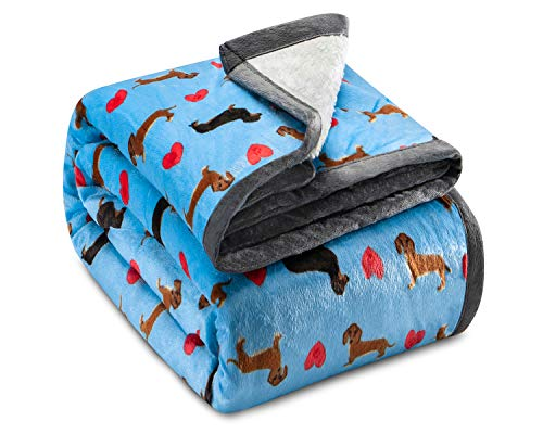 "Ashford & Brooks Printed Plush Sherpa-Lined Mink Fleece Cozy Throw Blanket 50"" x 60"" - Turquoise Dachshund Dog Love"