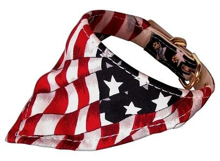 Mirage Pet Products America The Beautiful Bandana Collar for Dogs with Patriotic Leash